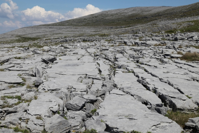 Limestone pavement. The Burren