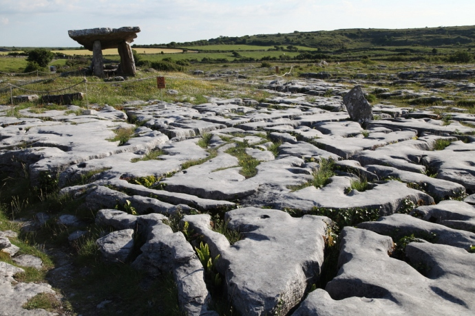 Poulnarbrone Dolmen.  The Burren.  Clints and Grikes in the foreground