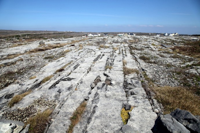 Limeston Pavement Inis Mor