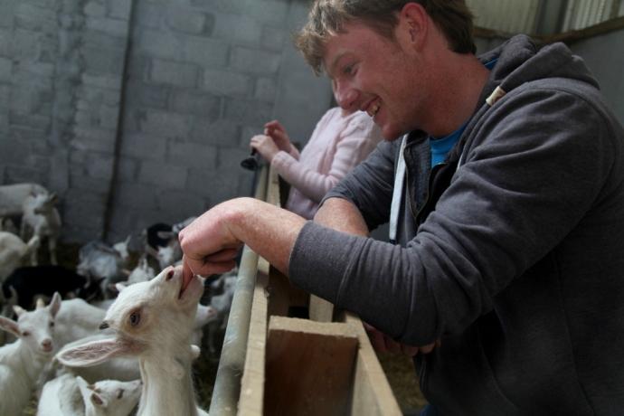 Inis Mor. Goat farm