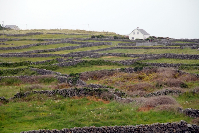 Inisheer.  Stone fields