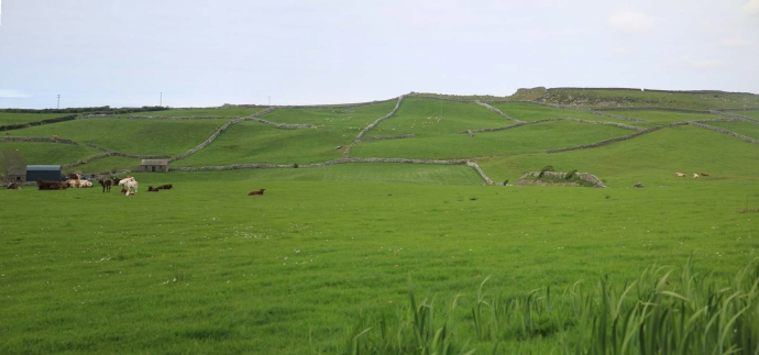 Rural view 2