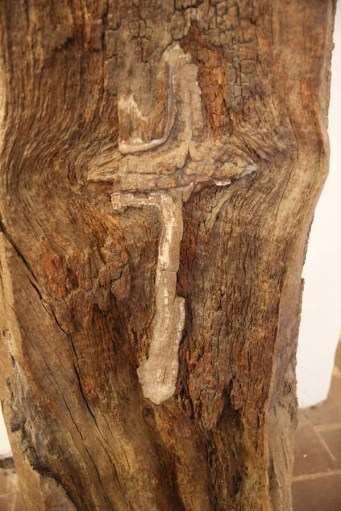 Detail of cross on marked tree