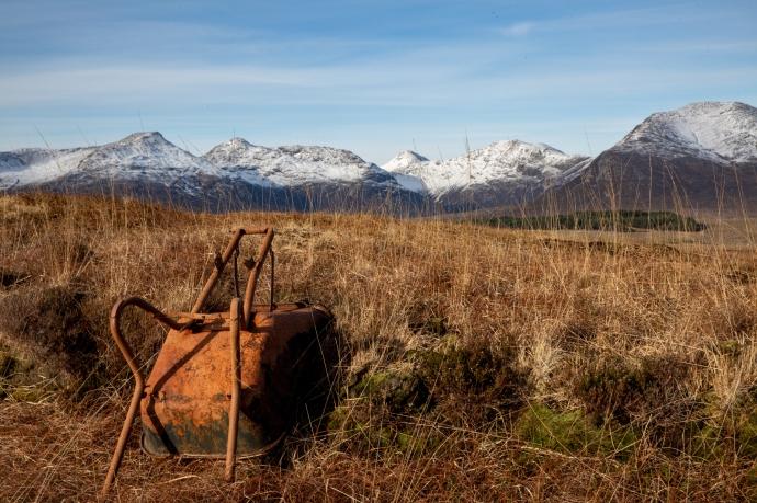 Bog Road-8698