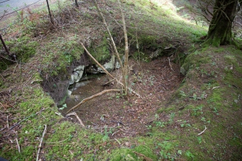 Collapsed shaft at Muckross Mine