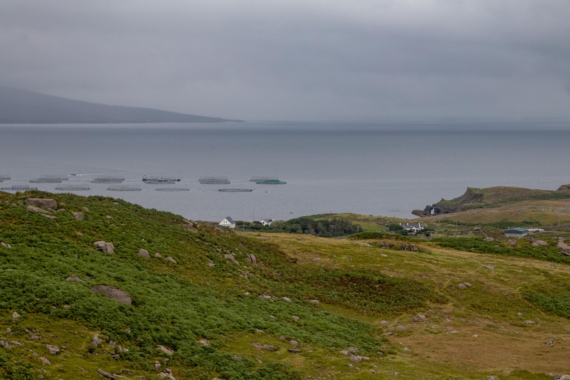 clare island-0203