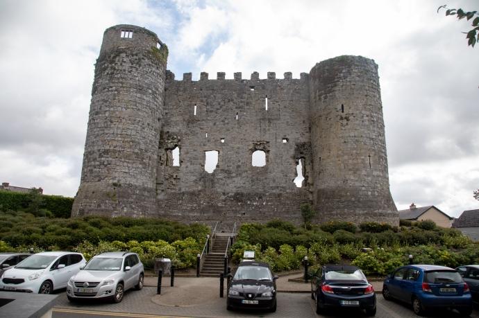 carlow castle-2940