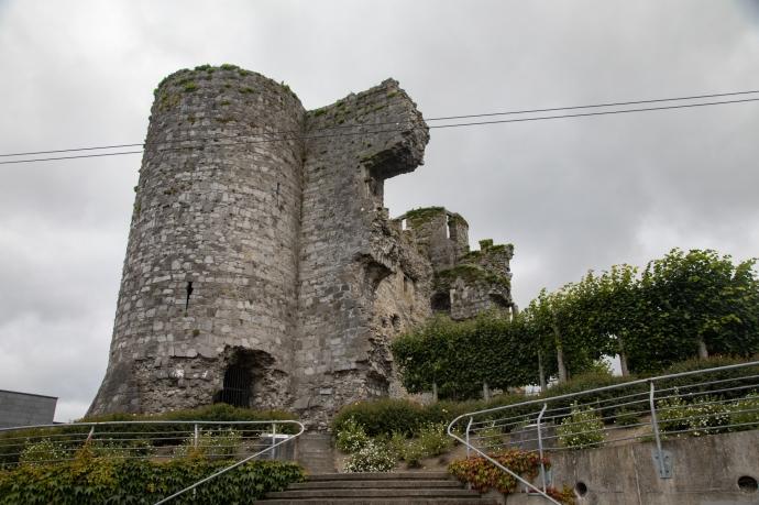 carlow castle-2953