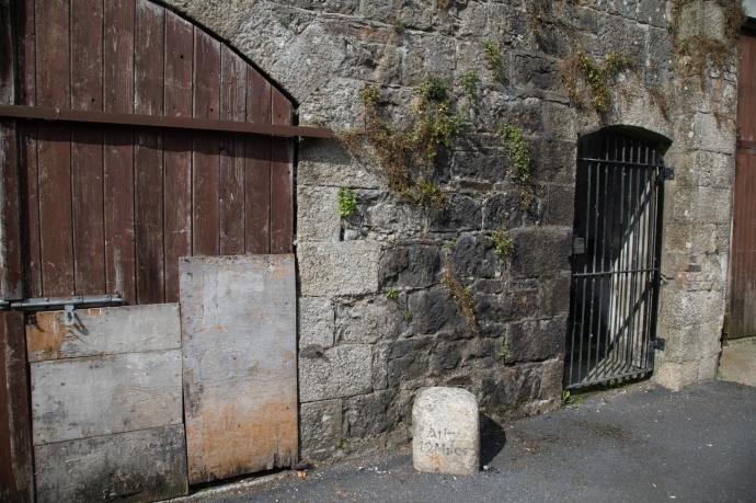carlow castle-2971