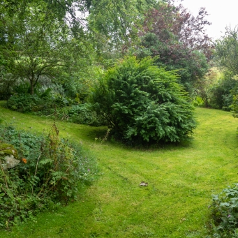 The garden surrounding the cottage