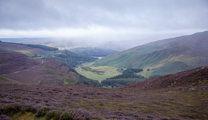 Sally Gap-3689
